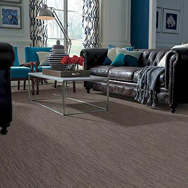 Anso® Nylon Carpet | Port Angeles, WA